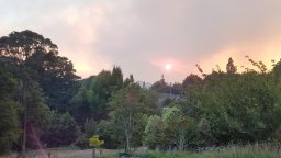 Photos from the Port Hills Fire
